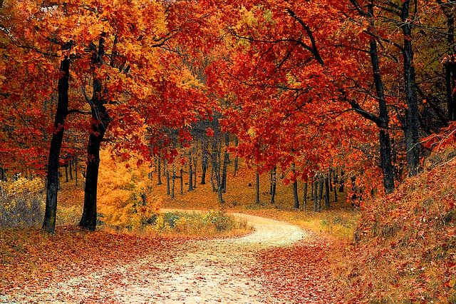 Savoir apprécier la beauté d'un paysage