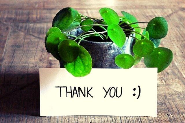 cultiver la gratitude au quotidien pour arrêter de déprimer